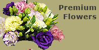 Premium Flowers Grown By Pyramid Flowers