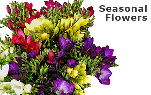 seasonal_flowers